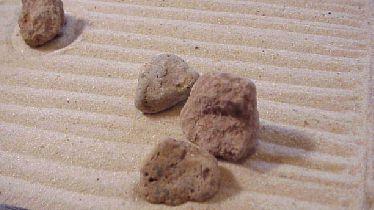Zen stone garden zen rock garden zen gkers of the zen gardens this is how the stones looked befor we added the lines around the stones in the garden workwithnaturefo